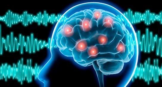 Control eléctrico en neuronas gracias a la Dieta Cetogénica