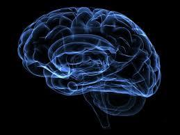 Perfiles cognitivos generales en pacientes con síndrome de deficiencia de GLUT1